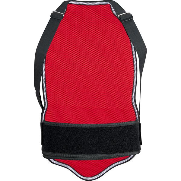 Dorsale Kendo - CE Level 1