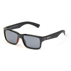 Lunettes Wolf Gyron